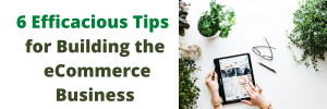 Six Efficacious Tips for Building the eCommerce Business